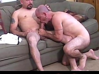 Mature bears get together for messy blowjob